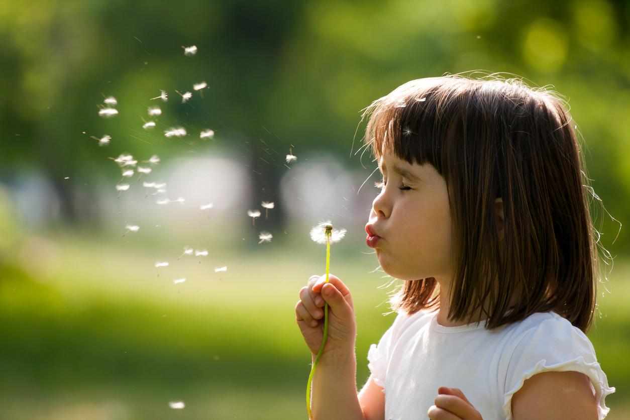 Child outdoors blowing dandelion fuzz in springtime. Seasonal allergies.